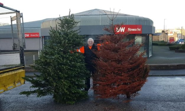 Tree-mendous effort for The Kirkwood and Forget Me Not Children's Hospice