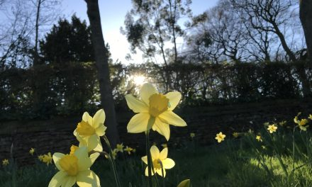 A sizzling Tuesday – but snow for Easter