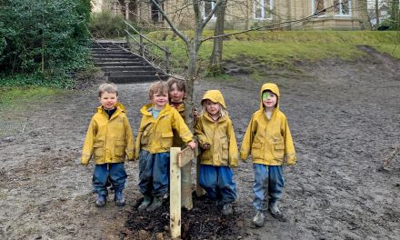 Nursery kids plant trees for next generation