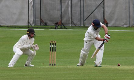 Honley's early collapse was Taylor-made for skipper Timmy