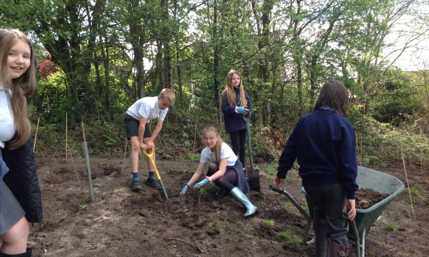 Eco mission for children at Nields School