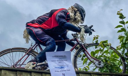 Ewe know who wins Meltham Scarecrow Festival vote as folk flock to see Shawn the sheep