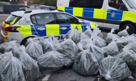 Four men charged after £350k worth of cannabis seized in Huddersfield raids