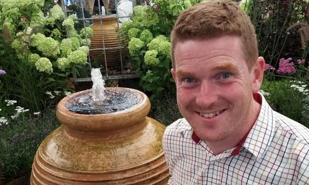 Gordon the Gardener on Harrogate Autumn Flower Show, preparing for the wonders of Spring and why you should have Pansy Cool Wave in your winter hanging basket